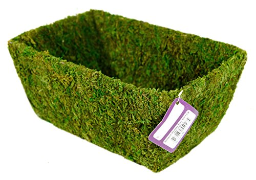 Super Moss (55023) Shasta, Fresh Green, Large by Super Moss (Image #2)