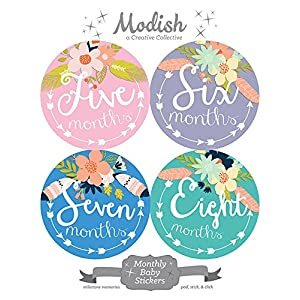 12 Monthly Baby Stickers, Tribal, Flowers, Feathers, Arrows, Girl, Baby Belly Stickers, Monthly Onesie Stickers, Baby Month Stickers, Arrows, Flowers, Tribal, Pink, Mint, Purple, Teal, Blue, Girl 7