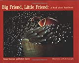 Big Friend, Little Friend, Susan Sussman and Robert James, 0395497019