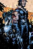 X-Men: The New Age of Apocalypse
