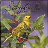 Songbirds 2013 Wall Calendar (16 Month) by Paper Craft