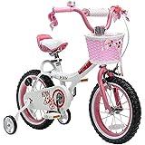 Best Royalbaby 16 Inch Bikes - Royalbaby JENNY 16 INCH KIDS BICYCLE Review