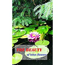 The beauty of lotus