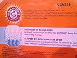 Arm & Hammer Odor Eliminating Vacuum Filter, Dirt