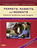 img - for Ferrets, Rabbits, and Rodents: Clinical Medicine and Surgery, 3e by Katherine Quesenberry DVM MPH Diplomate ABVP (2012-01-11) book / textbook / text book