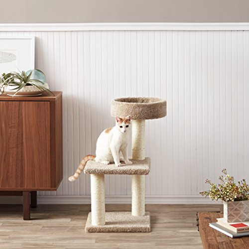 AmazonBasics-Cat-Tree-with-Scratching-Posts-Medium