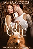 Bargain eBook - Wild One