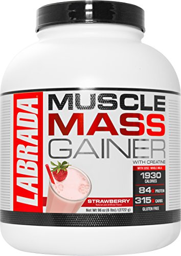 scle Mass Gainer, Strawberry, 6 Pound (6 Lb Strawberry)
