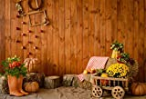 GoEoo 9x6ft Fall Farm Pumpkin Cart Background Rustic Barn Hay Bale Rural Wooden Block Photography Backdrop Countryside Autumn Harvest Photo Studio Props Thanksgiving Holiday Party Decor Vinyl Banner