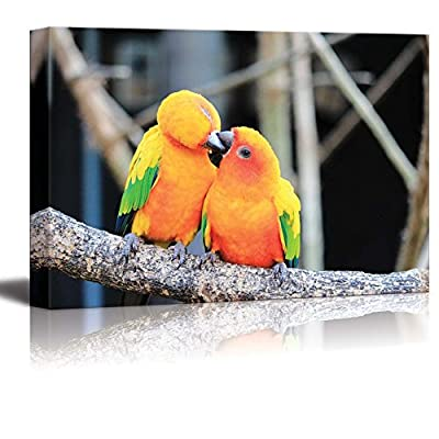 Canvas Prints Wall Art - Colorful Parrot Bird Kissing on The Perch Romantic Concept | Modern Wall Decor/Home Decoration Stretched Gallery Canvas Wrap Giclee Print & Ready to Hang - 16