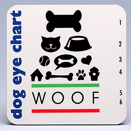 - Whimsical Dog Eye Chart Hardboard Coasters ~ boxed set of 4 ~ GRR-eat for dog and pet lovers