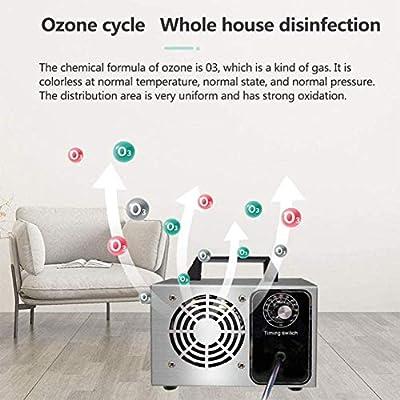 WSFF Generador de ozono, 10000 MG/h máquina de ozono Industrial ...