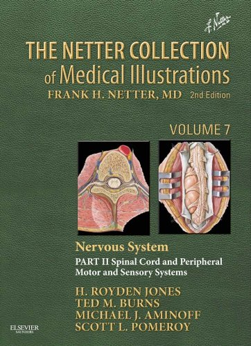 - The Netter Collection of Medical Illustrations: Nervous System, Volume 7, Part II - Spinal Cord and Peripheral Motor and Sensory Systems E-Book (Netter Green Book Collection)