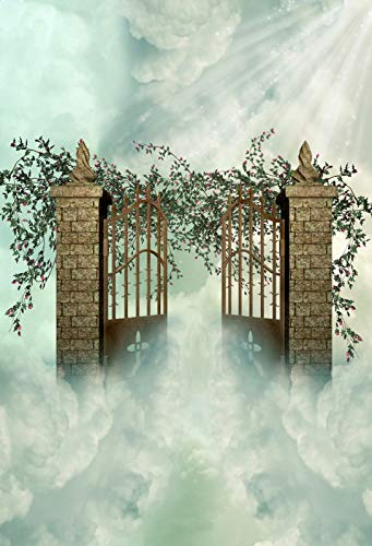 (Laeacco 3x5ft Photography Backdrop Dreamland Fairytale Holy Lights Brick Pillar Metal Gate Flowers Green Vine Heaven Blue Sky White Cloud Fantasy Background Baby Kids Lover Photo Shooting Studio Prop)
