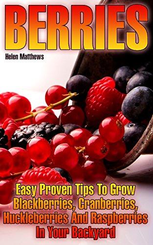 Berries: Easy Proven Tips To Grow Blackberries, Cranberries, Huckleberries And Raspberries In Your Backyard by [Matthews, Helen ]