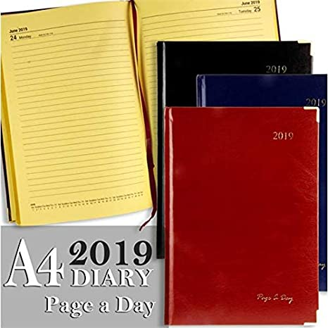 Premier Stationery S5718700 - Agenda (tamaño A4, 6 unidades ...