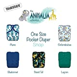 Thirsties Animalia Cloth Diaper Collection Package, Snap One Size Pocket Cloth Diaper, Animalia