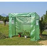 Serra da giardino per piante pomodori 200x77x169 cm in PE telaio in acciaio