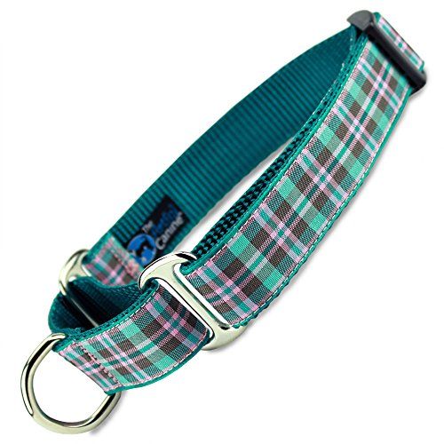 Preppy Puppy Plaid Martingale Dog Collar, Large Dogs 35 - 60lbs, (Collar: 1