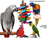 Color Splash Bird Chew and Preen Bird Toy (Medium)