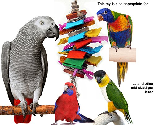 Color Splash Bird Chew and Preen Bird Toy (Medium) by Avianweb (Image #2)