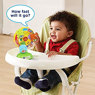 VTech Baby Lil' Critters Spin and Discover Ferris Wheel: Toys & Games
