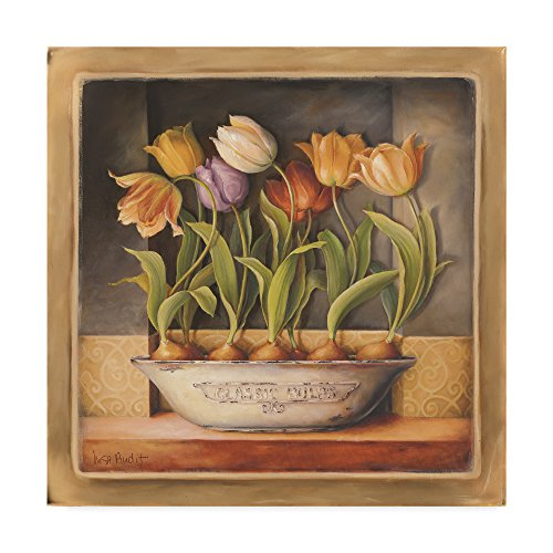 Trademark Fine Art Tulip Classic Bulb by Lisa Audit, -