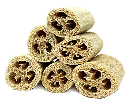 Super Savings Six (6) Pack of 4'' Loofahs!! by Spa Destinations. by Spa Destinations (Image #1)