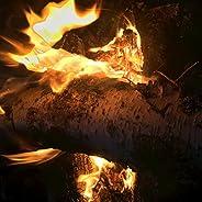 Maine Crackling Campfire for Sleep