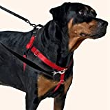 2 Hounds Design Freedom No-Pull Dog Harness Training Package with Leash, Black, Medium (1-Inch Wide)