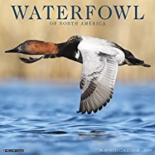 Waterfowl 2019 Wall Calendar