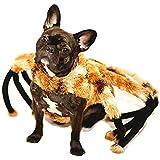 Nicky Bigs Novelties Spider Tarantula Dog Costume Mutant Halloween Pet Costume TarantuLucy Furry Legs
