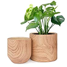 HOMENOTE Plant Pots Indoor 6 inch Pack 2, Ceramic Planter Flower Pots with Natural Wood Texture