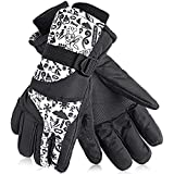AsDlg Ski Glove Gloves Waterproof Windproof for Men, Women, Boys, Girls Winter Outdoor Sports Warm Couple Snowboard Gloves Thermal Warm Snow Skiing Snowboarding Snowmobile with Adjustable Cuffs
