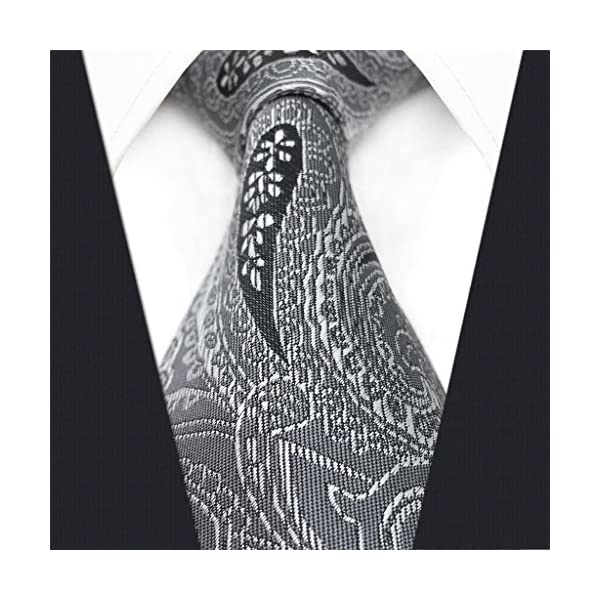 Shlax&Wing Business Paisley Mens Necktie Grey Ties Set Skinny Extra Long Classic