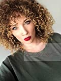 Vigour Beauty Wigs for Black Women Afro Kinky Wig Short Curly Wigs Blonde and Brown Ombre Wig Heat Resistant Fiber 14'' with Wig Cap