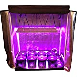 Amazon com : Hydro Home Grow New 2019 Complete Indoor Grow Tent LED