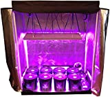 8 Site Hydroponic System Grow Room - Complete Grow Tent  sc 1 st  Amazon.com & Amazon.com : Complete Two Room Perpetual Grow Tent Kit w/600W ...