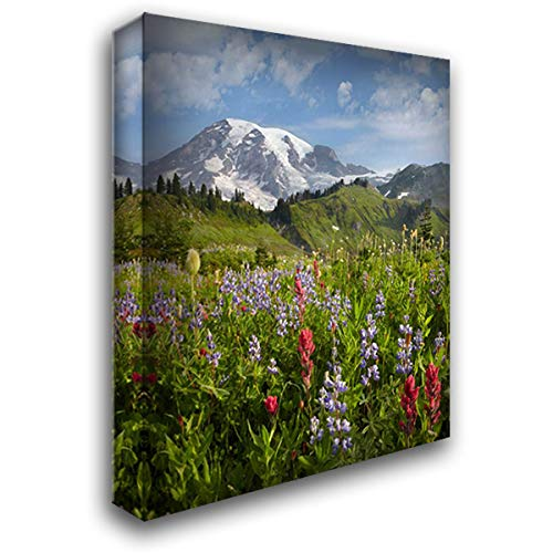 Paradise Meadow and Mount Rainier, Mount Rainier National Park, Washington 28x36 Gallery Wrapped Stretched Canvas Art by Fitzharris, Tim