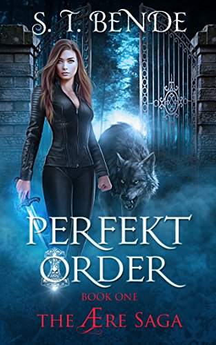 Perfekt Order (The Ære Saga Book 1) ()