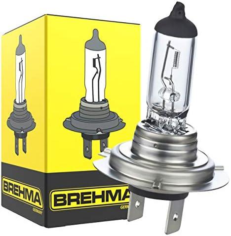 10x Brehma H7 Halogen Lampe Autolampe 12v 55w Px26d Scheinwerfer Lampe Ersatzlampen Abblendlicht Fernlicht Nebellicht Auto