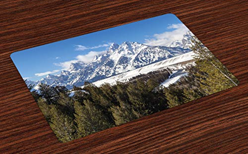 Ambesonne Wyoming Place Mats Set of 4, Magnificent Landscape of The Grand Teton Snowy and Cloudy Peaks with Trees, Washable Fabric Placemats for Dining Room Kitchen Table Decor, Green Multicolor