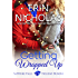 Getting Wrapped Up: a Sapphire Falls Holiday Bundle