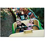1 day park hopper adult or child Disney