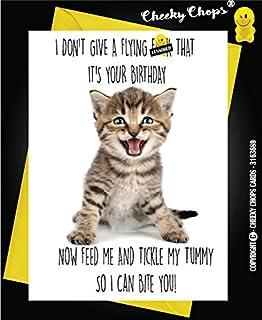 Birthday Cat Kittens Pets Card Funny Rude Love Joke Present