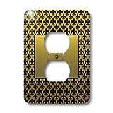 3dRose LLC lsp_36080_6 Elegant Letter B Embossed In Gold Frame Over A Black Fleurdelis Pattern On A Gold Background 2 Plug Outlet Cover