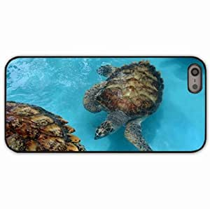 iPhone 5 5S Black Hardshell Case sea turtles many family Desin Images Protector Back Cover