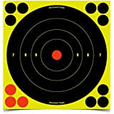 La cible à de Birchwood Casey Shoot-NC Bull (8 pouces)