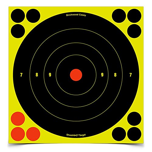 Birchwood Casey Shoot-N-C Bull's Eye Target (8-Inch) Pack of 6 with 72 Pasters ()