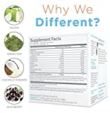 Zoganic Herbal Coconut Supplement Drink Mix for Energy Booster with Electrolytes, Caffeine-free –Organic vitamin B & Green Tea- from the Fruit Coconut flavor. Sweetened with Stevia – 15 Powder Sachets